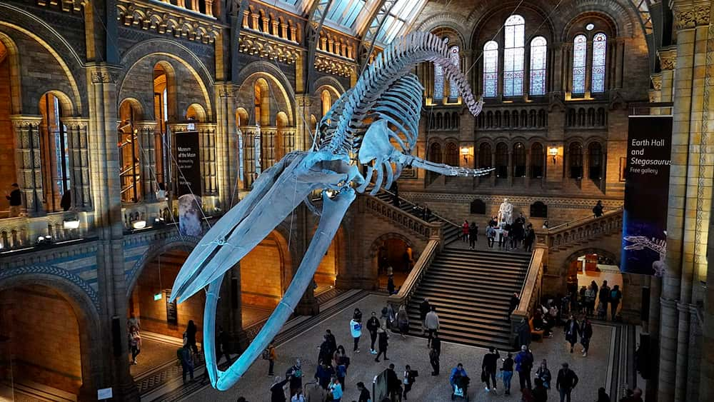 Museos-en-Londres