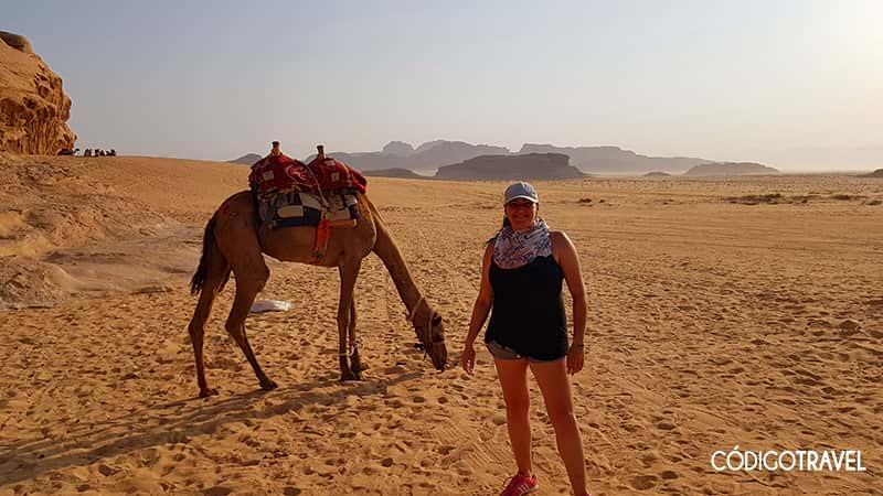 Cuando viajar a Wadi Rum